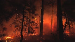 Fire being blown on ground by wind at night - stock footage