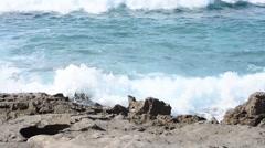 Small waves crashing into dark rocks Stock Footage