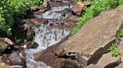 Peaceful, Gurgling Mountain Stream 02 Stock Footage