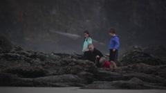 2014 Oregon Coast Vid-067 Stock Footage