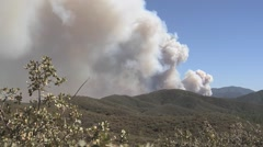 Plume of smoke over mountain with bush in foreground Stock Footage