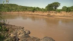 Riverside of Mara River with Hippos in Slow Motion, Maasai Mara, Kenya Stock Footage