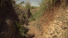 Walking in Maasai Mara Safari, Kenya Stock Footage