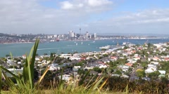 Auckland skyline view from mount victoria hill, New Zealand Stock Footage