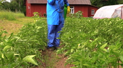 Gardener man spray vegetables in garden. Plant protection Stock Footage