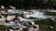 Flowing Water in Mountain Stream River Brook. Stock Footage