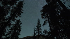 Stars In Night Sky Over Trees Forest to Sunrise Timelapse - stock footage