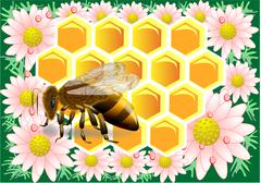 beeswax with bee - stock illustration