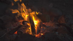 Burning Campfire at the Danish Landside Stock Footage