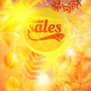 Autumn sale fall yellow leaves nature background. Piirros