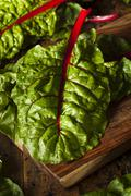 raw organic red swiss chard - stock photo