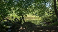 A single cutter thowd on a crooked tree on Danish Riverside Stock Footage