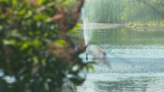 Fountain at a Duck Pond - Foreground Out of Focus - stock footage
