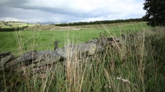 Dry stone wall in Scotland, UK, England Stock Footage