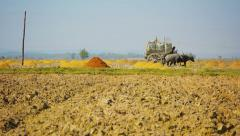 Wooden wagon delivers rice husks in the field. ancient way of fertilizer. mya Stock Footage