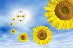 Symbolic image for solar energy, sun flowers flying out of an electric socket Stock Illustration