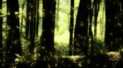 Mysterious Deep Forest Fireflies 1 Stock Footage