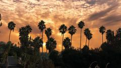 Clouds sunrise over palm trees silhouettes Los Angeles, California. Timelapse. Stock Footage