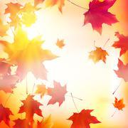 Delicate autumn sun with glare on gold sky. - stock illustration
