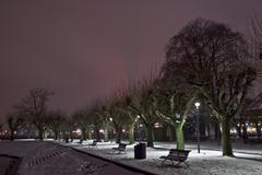 Stock Photo of constance municipal park at night, winter, baden-wuerttemberg, lake constance