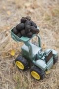 Animal dung on toy tractor Stock Photos