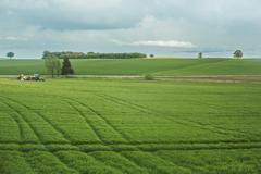 Tranquil scene of agricultural landscape Stock Photos