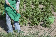 Low section of woman working in community garden Stock Photos