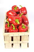 red bell peppers (capsicum) in a basket - stock photo