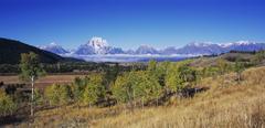 Teton range and aspen trees in fall color, grand teton national park, wyoming Stock Photos