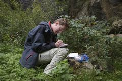 man lifting a geocache near buchenbach in the black forest, germany, europe - stock photo