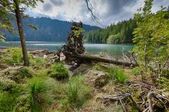 Stock Photo of glacial black lake surrounded by the forest