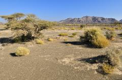 desert landscape near sinaw, sharqiya region, sultanate of oman, arabia, midd - stock photo
