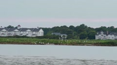 Numerous seagulls flock to an island in Assawoman Bay Stock Footage