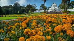 Strybing Arboretum, Botanical Gardens, Golden Gate Park Stock Footage