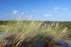 Mimizan plage beach, landes, aquitaine, southern france, france, europe Stock Photos