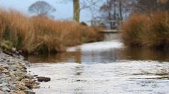 (NTSC) Shallow DOF Stony Shore Stream Slow Motion 720 50fps English Countryside Stock Footage