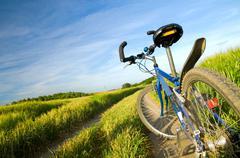 Bike on the summer field. active lifestyle, sport Kuvituskuvat
