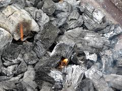 smoking burning charcoal - stock photo