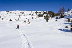 Ski tourer on the ascent to cima bocche above passo valles, behind the cima b Stock Photos