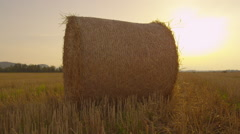 Bale of hay on a farmland at sunset - stock footage