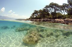 Underwater landscape, cleopatra island, aegean sea, turkey Stock Photos