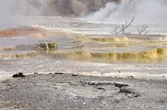 Stock Photo of sinter terraces, coloured by thermophilic bacteria, trail springs, main terra