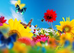 Sunny garden of flowers and butterflies Stock Illustration