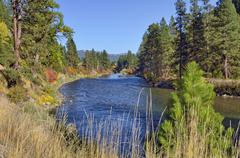 South fork payette river, wildlife scenic byway, garden valley, highway 24, i Stock Photos