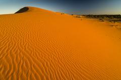 Stock Photo of red dunes, kgalagadi transfrontier park, kalahari desert, northern cape, sout