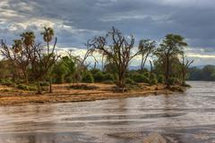 Stock Photo of ewaso ng'iro river in samburu national reserve, kenya, east africa, africa, p