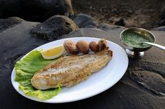 Grilled perch fillet with wrinkly potatoes, papas arrugadas and mojo verde, l Stock Photos