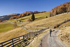 hiker during the descent from the gedrumalm alpine pastures in the gedrum val - stock photo