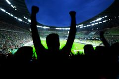 Football, soccer fans support their team and celebrate goal, score, victory.  Stock Photos