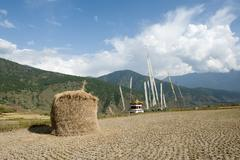 Stock Photo of place of pilgrimage, pile of straw, field near the chimi lakhang fertility te
